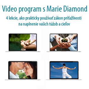 MD video program square v2